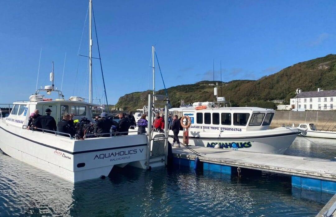 Sea Safari Boat Trips Aquaholics